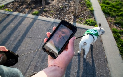 Was Your Dog Walked? Your Phone Can Show You