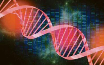 Software desenvolvido em MG contribui no diagnóstico de doenças genéticas