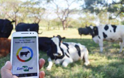 Embrapa lança aplicativo para gerenciamento de fazendas leiteiras