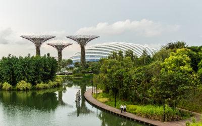 Algoritmo encontra a cidade mais verde do mundo