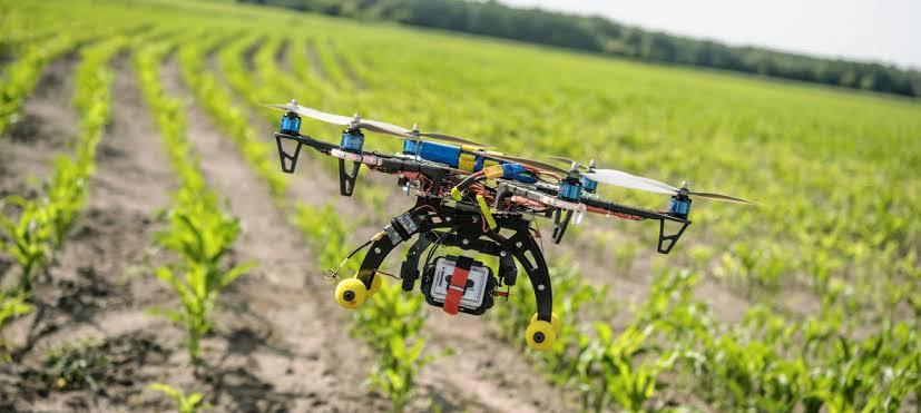 Conheça 4 tecnologias que vão digitalizar a agricultura brasileira
