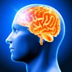 Análise de dados na luta contra o Mal de Parkinson