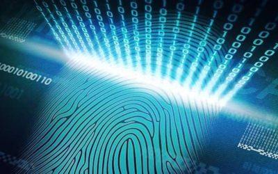 Cinco dicas estratégicas para evitar vazamentos de informações nas empresas