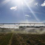 Novas tecnologias digitais auxiliam produção no campo