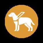 Inteligência artificial para selecionar cães-guias