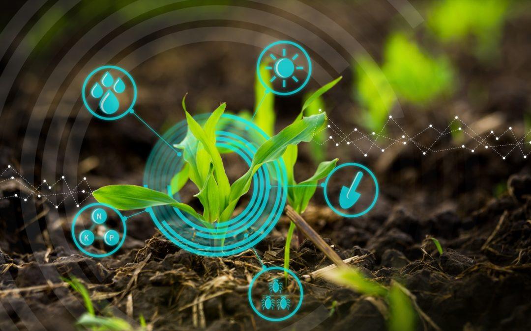 Embrapa, Sebrae e Inpe realizam levantamento on-line sobre tendências em agricultura digital