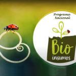 Aplicativo Bioinsumos ajuda produtor rural a controlar pragas e doenças