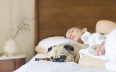Wearables apontam que estamos dormindo melhor na quarentena